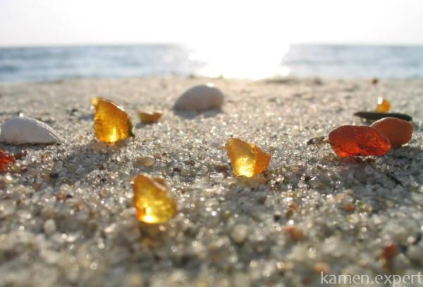 Янтарь на берегу