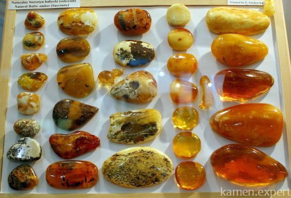 Виды янтаря в музее